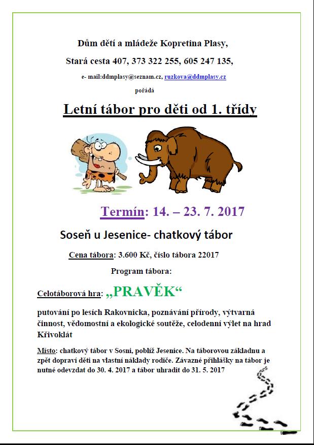 Letní tábor pro děti  1